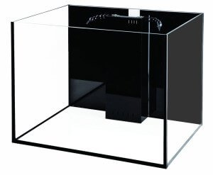 Rimless Starfire 50 Gallon Glass Aquarium