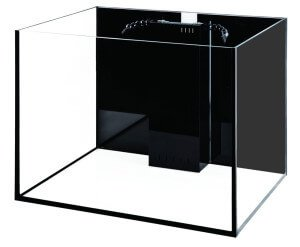 Starfire Rimless 80 Gallon Cube Aquarium
