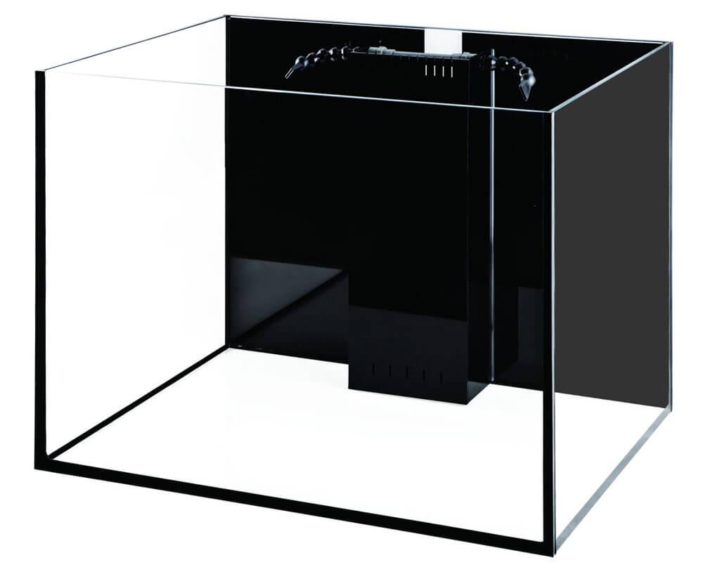 Starfire 80 Gallon Rimless Ultra-Clear Aquarium Review 10 Gallon Home Aquariums