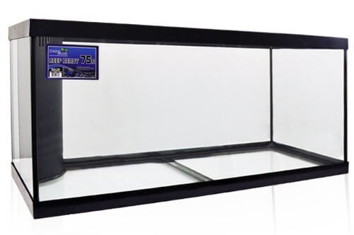 Inch Glass Aquarium