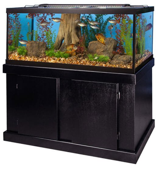 Marineland 75 gal majesty aquarium ensemble review for 50 gallon fish tank dimensions