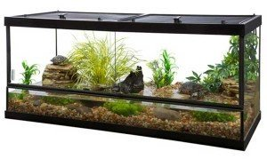 Tetra-Usa-Double-Door-Vivarium