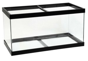 9 beautiful 50 gallon aquariums compared myaquarium for 50 gallon fish tank dimensions
