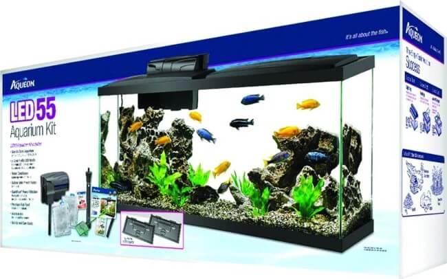 55 gallon fish tank vs 75 gallon aqua culture aquarium for Fish tank kits walmart