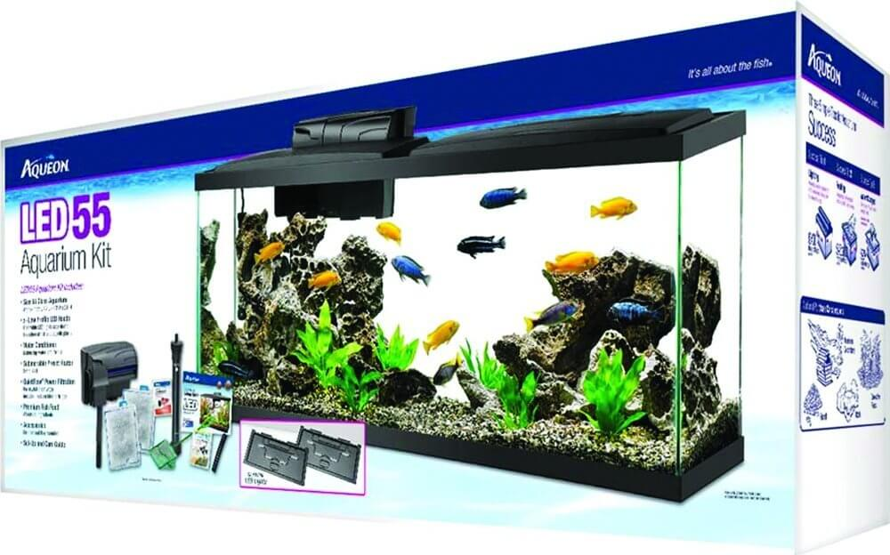 aqueon led 55 gallon aquarium kit review spec