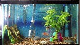 Aquarium Gravel Cleaner, Vacuum and Siphon