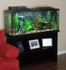 Marineland 37 Gallon Aquarium Ensemble